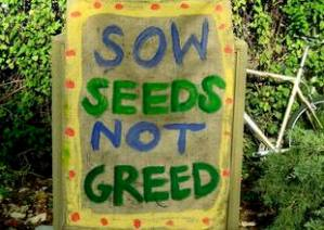 sow seeds not greed