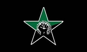 ELF flag